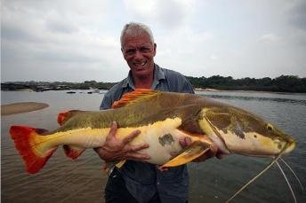 jeremy-wade-pictures0