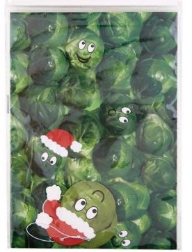 papier-cadeau-sprout-newlook